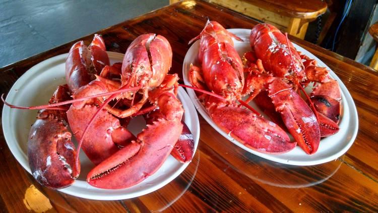 Carmen's Lobster2